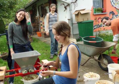Apfelsaft pressen mit der Gastfamilie